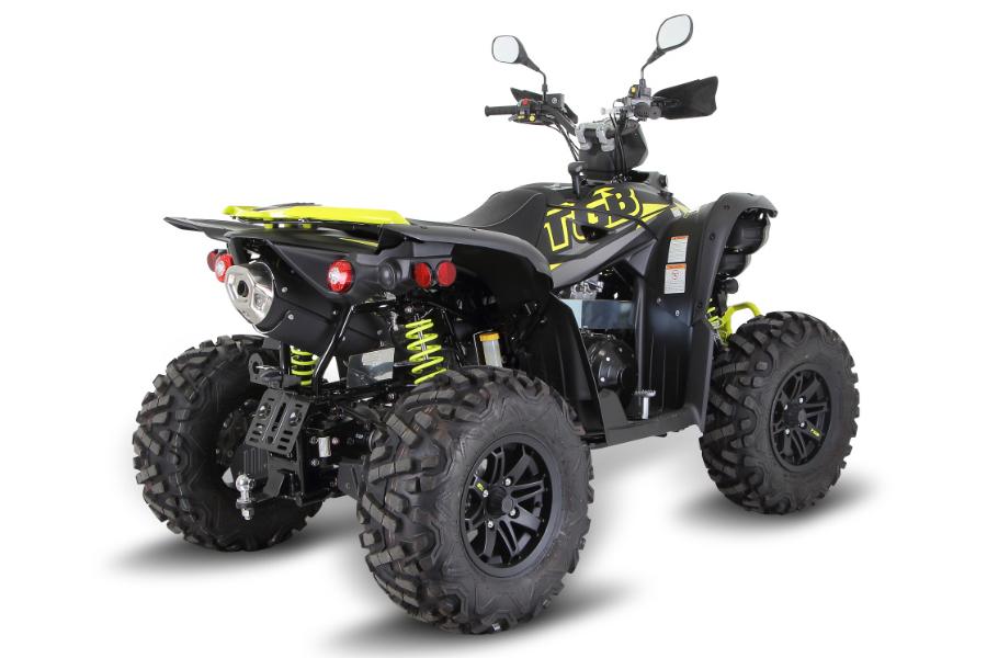TARGET 600 EPS 4x4